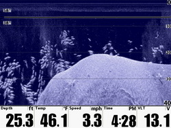 humminbird-down-imaging-DI-with-fish.jpg